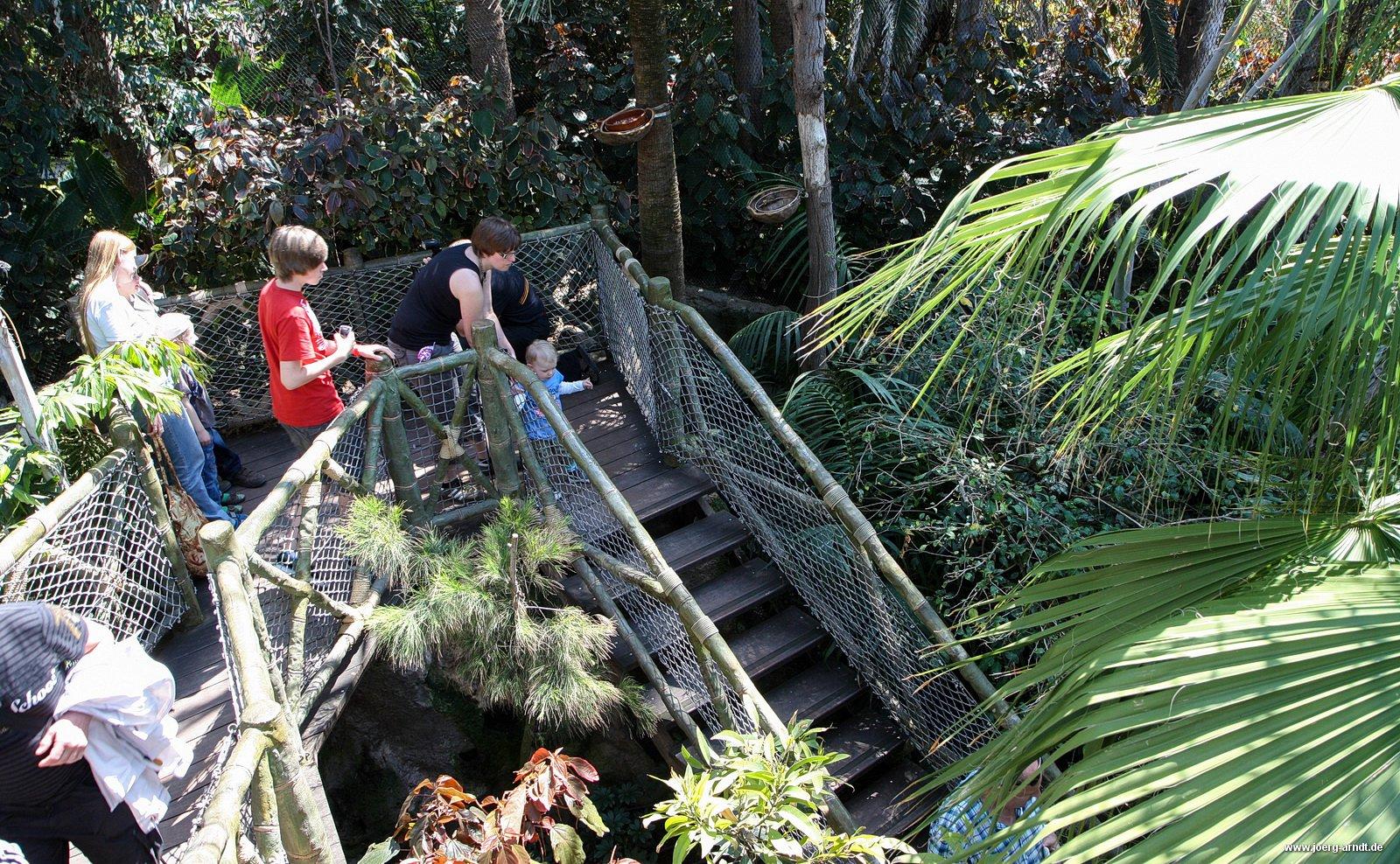 Foto-Rundgang: Auf Discovery-Tour im Loro-Parque  Puerto ...