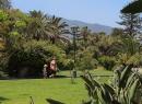 Der obere Bereich vom Playa Jardin ist mit Palmen, Blumen und Grasflächen bepflanzt.
