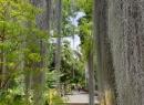 Der Weg führt in den hinteren Teil des Gartens - dazu später mehr.