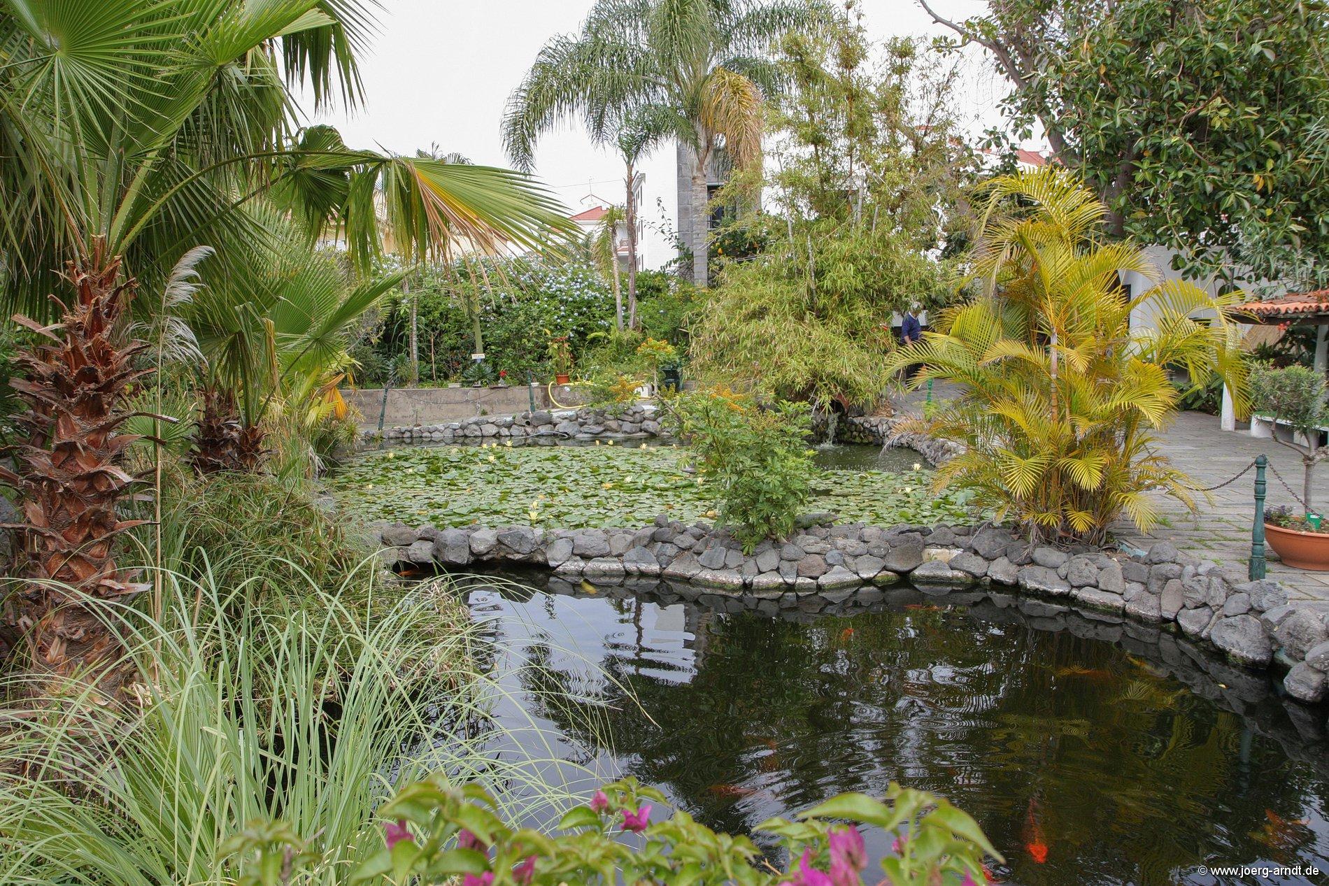 Bilder aus dem Garten Sitio Litre in Puerto de la Cruz.