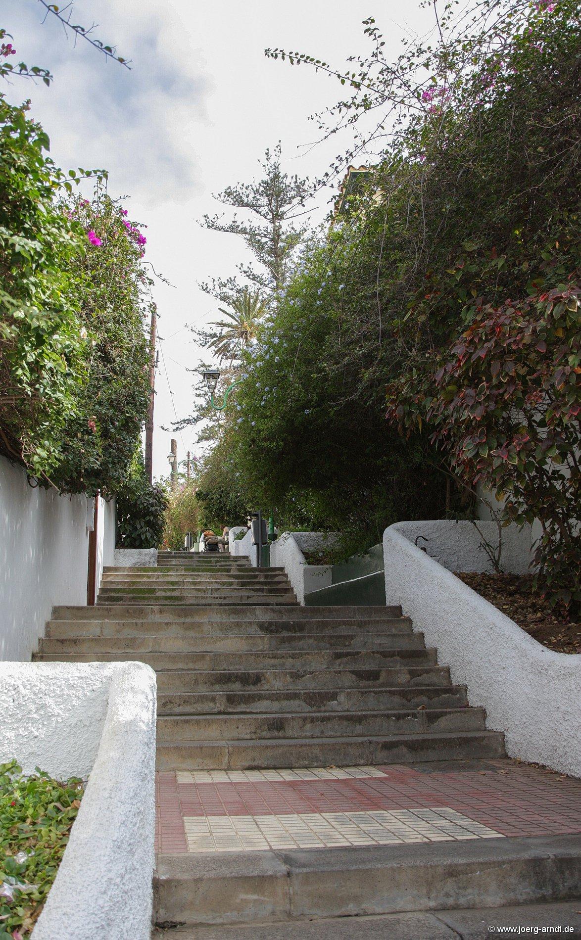 Bilder aus dem Garten Sitio Litre.