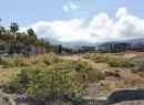 Weiter geht es in Richtung Playa Jardin. Dafür muss der Barranco San Felipe überquert werden.