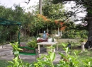 In Puerto lohnt sich auch ein Besuch im Orchideengarten Sitio Litre.