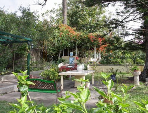 Sitio Litre: mehr als ein Orchideen-Garten