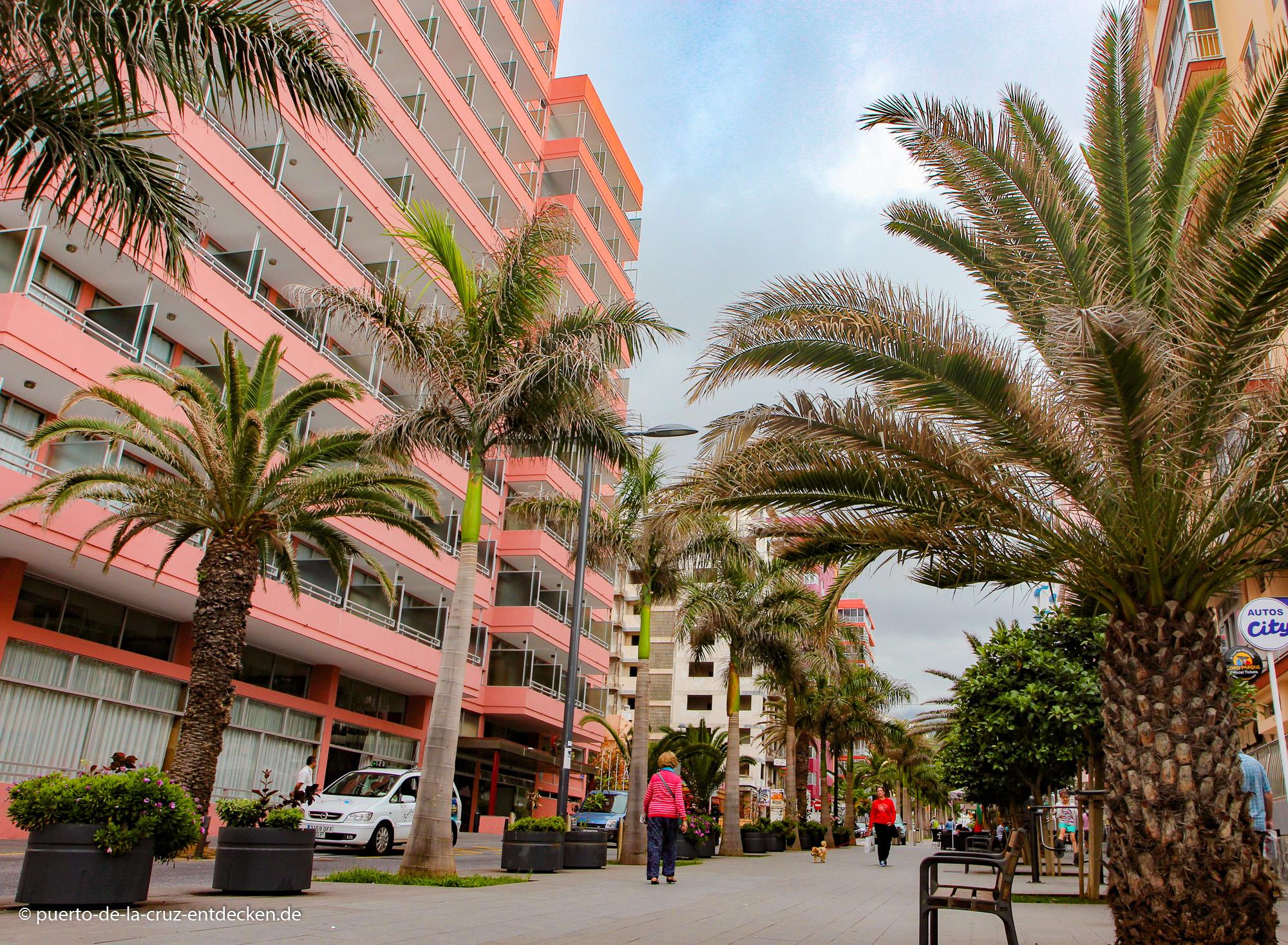 Die Avenida Colón ist die Vorzeige-Promenade der Stadt.