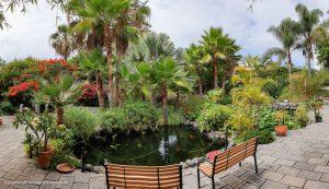 Teich im Sitio Litre Garten in Puerto de la Cruz